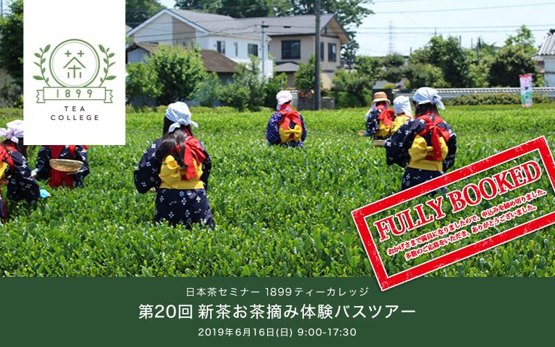 [追加開催]第20回:新茶お茶摘み体験バスツアー